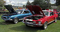 1968_gt500_and_gt350_2