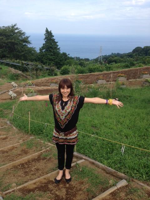 『一夜城  Yoroizuka  Farm 』♪♪