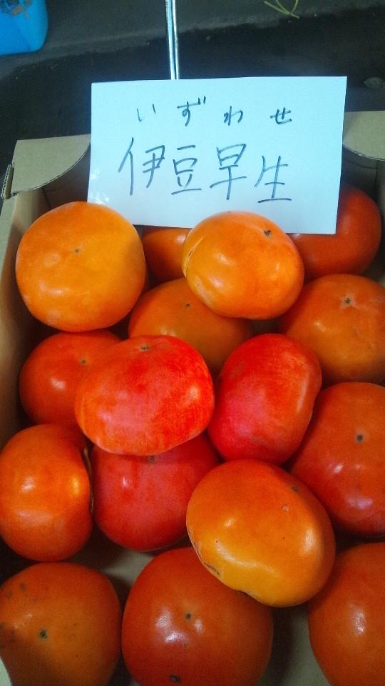 柿は2種類!!!!