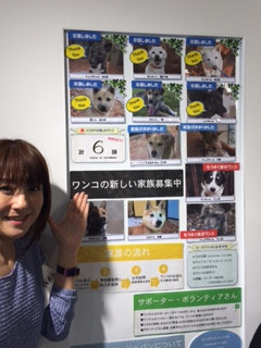 「GREEN DOG 湘南」さん