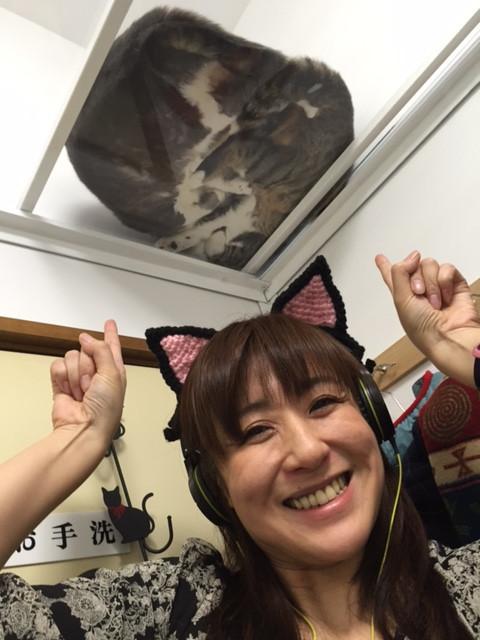 保護猫カフェ 湘にゃ庵 さん!